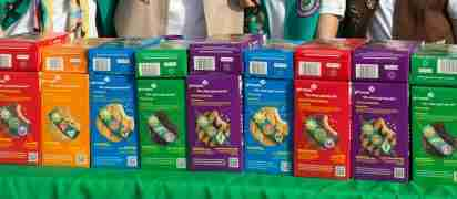 Girl scout cookies new flavor