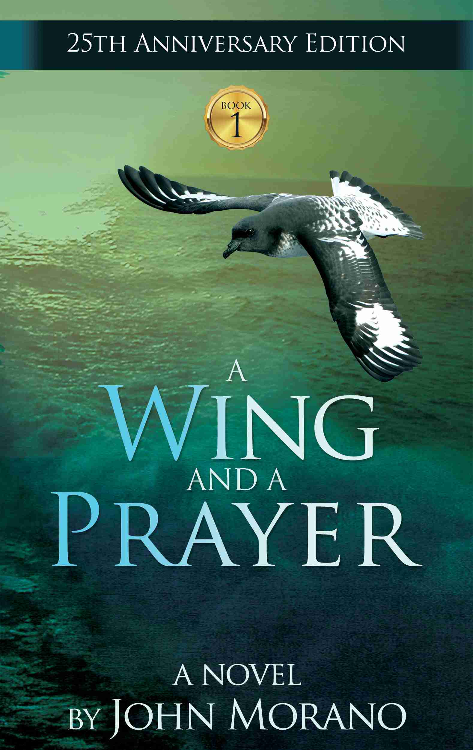 A wing and a prayer John Marano